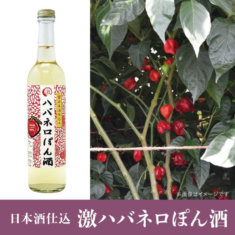 日本酒仕込 激ハバネロぽん酒