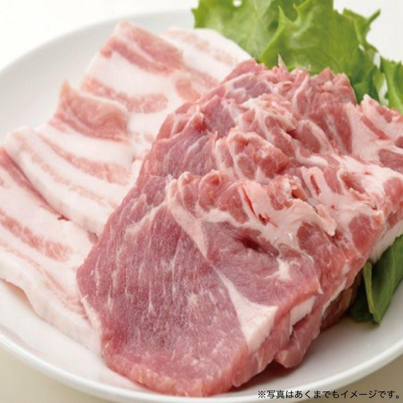 いばらき地養豚バラエティーセット